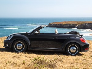 beetle cabrio 50 editions